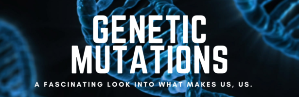 Genetic Mutations: A Fascinating Look Into What Makes Us, Us.